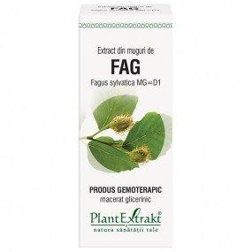 extract din muguri de fag 50ml
