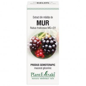 extract din mladite de mur 50ml