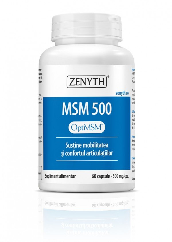 MSM 500mg 60cps