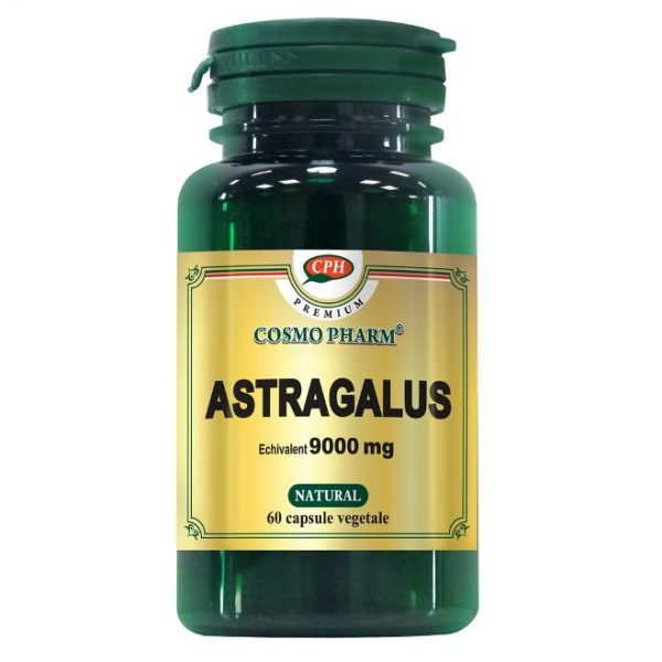 PREMIUM Astragalus Extract 450mg 60cps